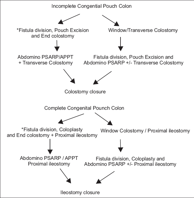 Algorithm for management of congenital pouch. *Preferred